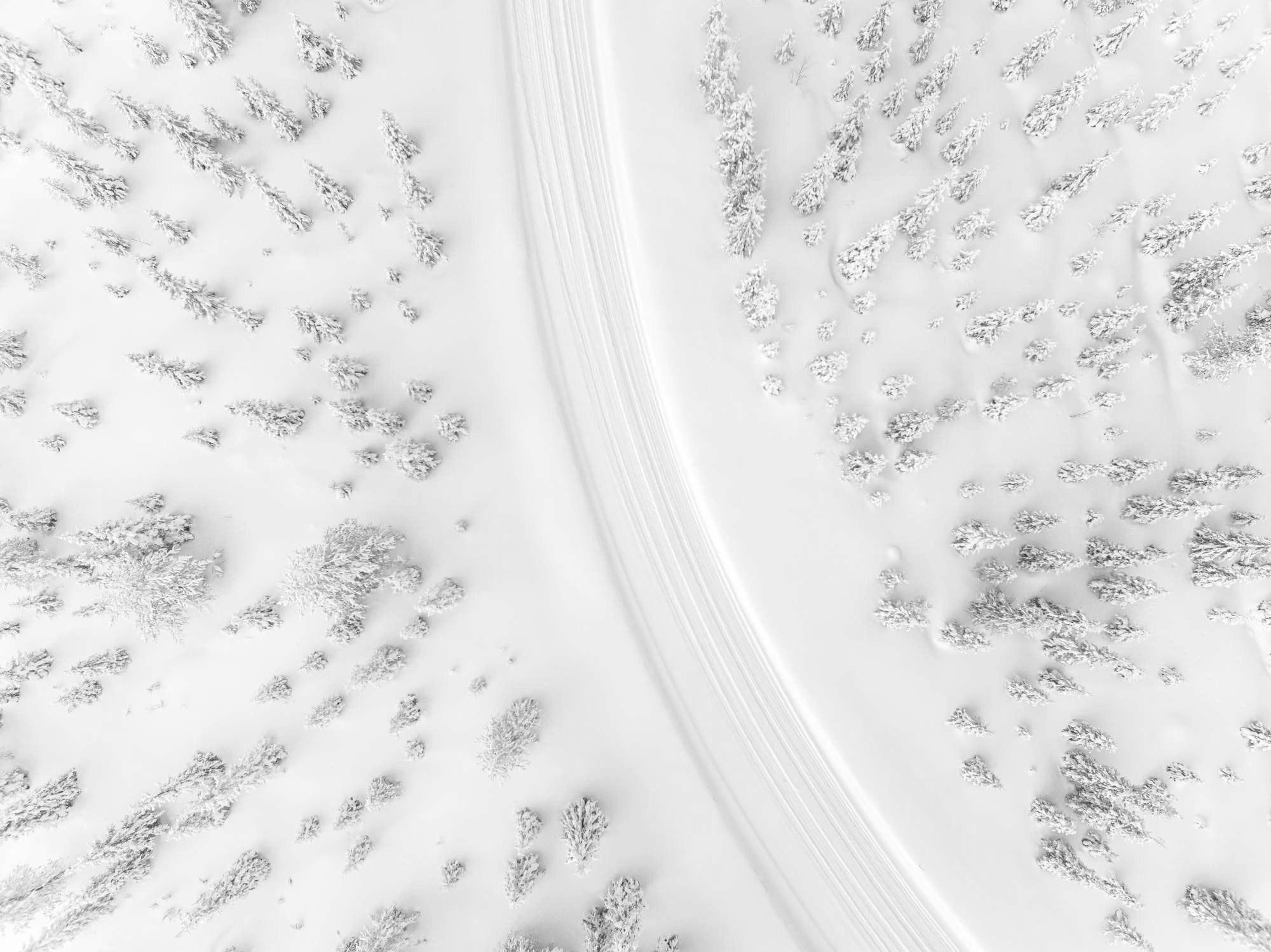 sweden-snow